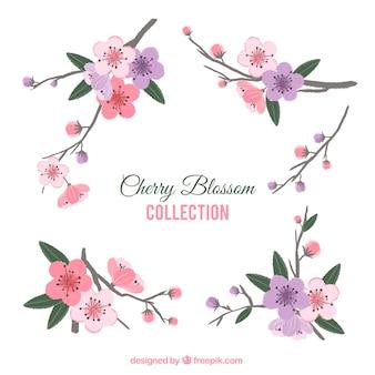 桜の装飾的な要素のパック