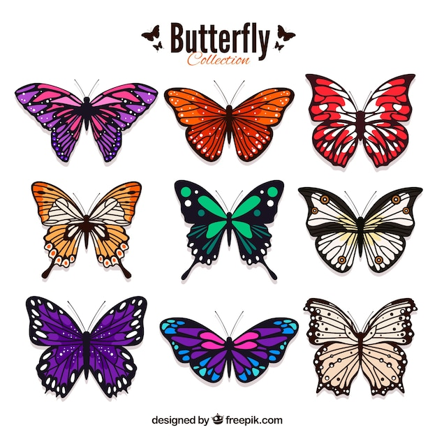 butterfly vectors photos and psd files free download rh freepik com vector butterfly wings vector butterfly wings