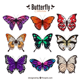 Pack of colored butterflies in realistic style