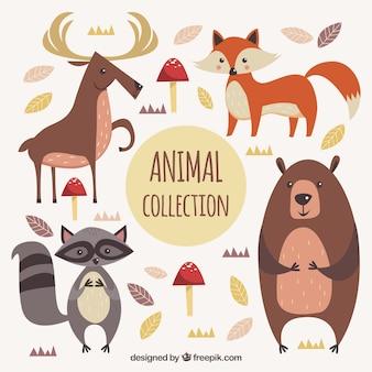 Набор милых животных из леса
