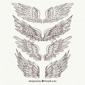 Pack of elegant hand drawn wings