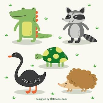 웃 고 다섯 귀여운 동물의 팩