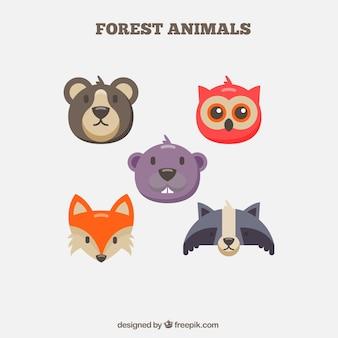 フラットなデザインの5つの森林動物のパック