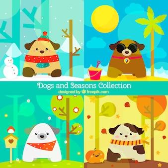 Пакет дружественных собак в разные времена года