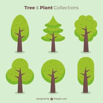 Пакет зеленых деревьев