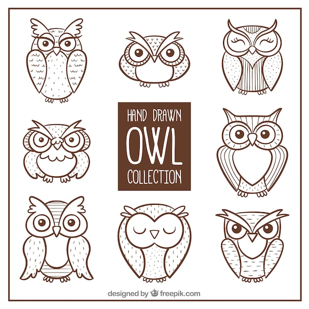 owl vectors photos and psd files free download rh freepik com owl vector art free cute owl vector art