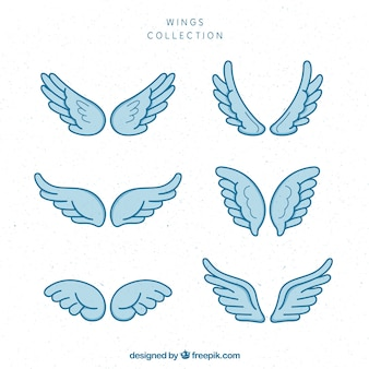 Пакет вытянутых вручную крыльев