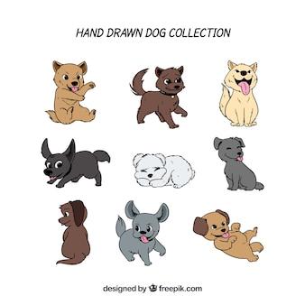 9つの手描きの子犬のパック