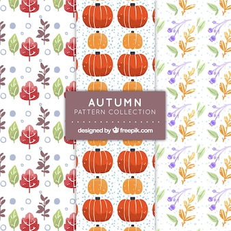 Pack of patterns with traditional autumnal elements