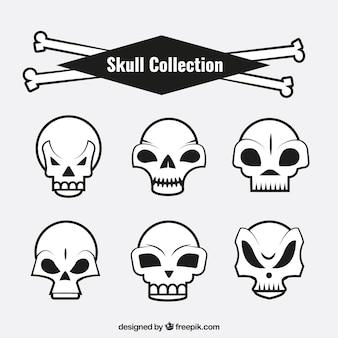 Упаковка из черепов с забавными конструкций