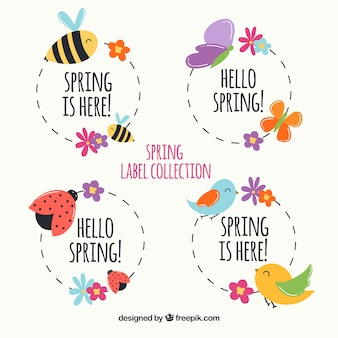 Spring Vectors Photos And Psd Files Free Download