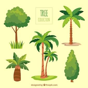 手描きのスタイルの木々のパック