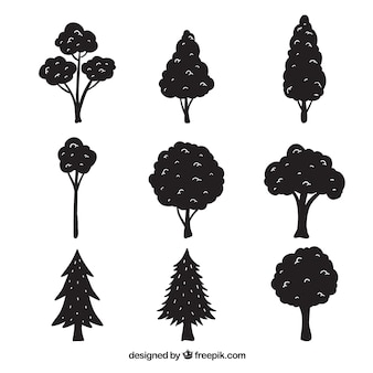 シルエットを持つ木々のパック