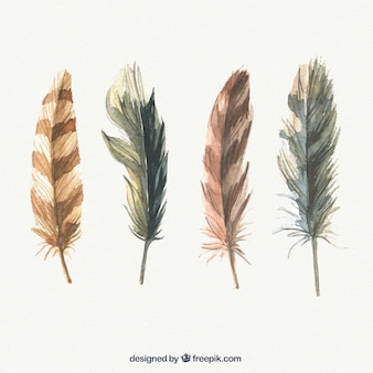 Pack of watercolor feathers