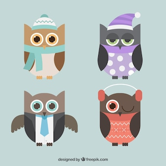 Pack of owls in flat design