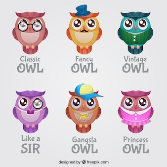 Pack of owls with different styles of clothes