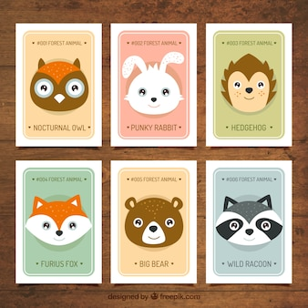 Pack of six cards with cute wild animals