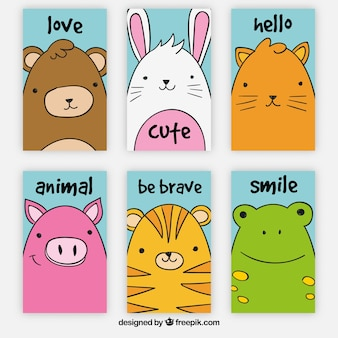 Pack of six cute animal cards