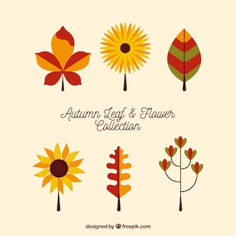 Pack of six flowers and leaves in flat design