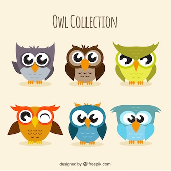 Pack of six funny owls in flat design
