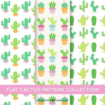 Confezione di tre modelli con cactus in design piatto