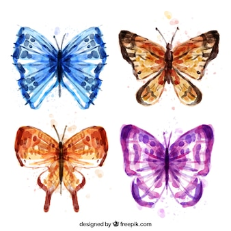 Confezione da farfalle acquerello