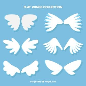 Confezione di ali bianche