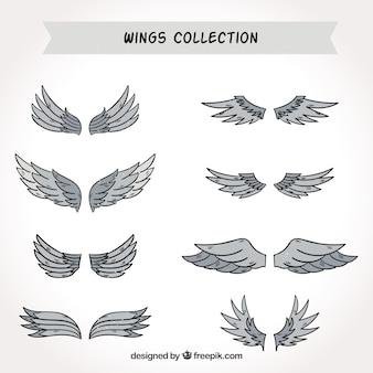 Pack of wings in gray tones