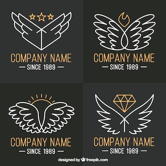 Pack of wings logos with golden details