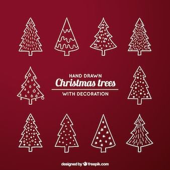 Pack with different kind of christmas trees