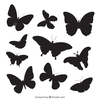 다양한 나비 실루엣 팩