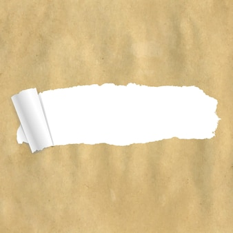 Package paper torn with gradient mesh,