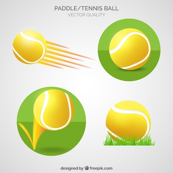 Paddle and tennis ball