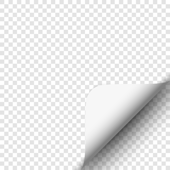 Page curl on transparent background. white paper.  .