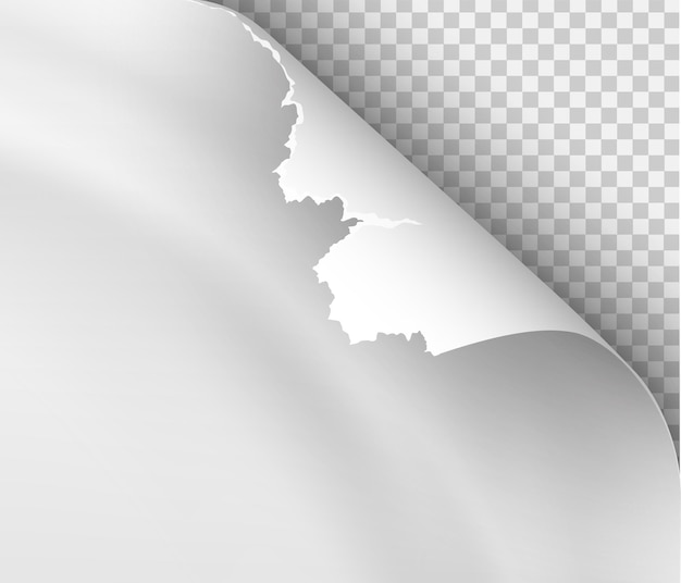 Page curl with shadow on blank sheet of paper for advertising and promotional message isolated on transparent background
