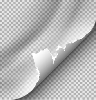 Загнутая страница с тенью на чистом листе бумаги