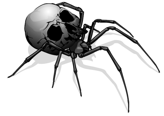 무서운 그림으로 그린된 거미 해골