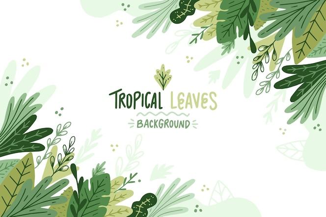 彩绘热带树叶背景
