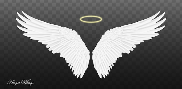 Pair of beautiful white angel wings isolated on transparent background.