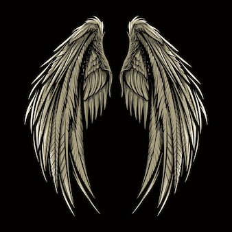 Pair of wing vector illustration isolated