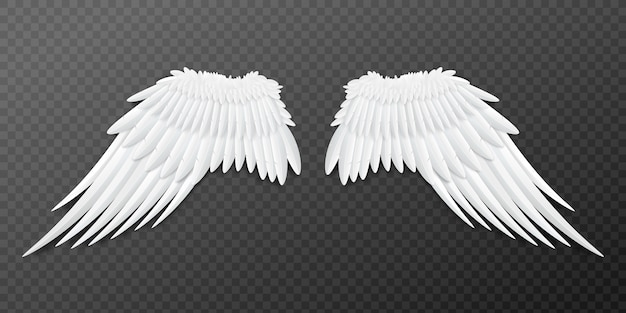 Paired angel or bird wings template