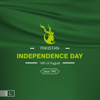 Pakistan independence day background disegno