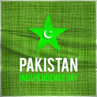 라인과 스타와 함께 파키스탄 독립 기념일 디자인