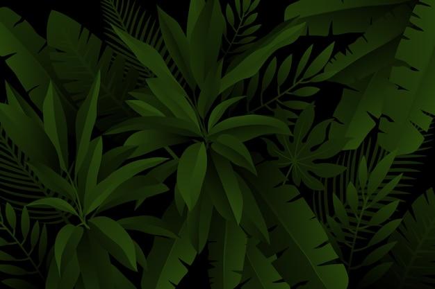 Листья пальмы и папоротника реалистичный темный тропический фон