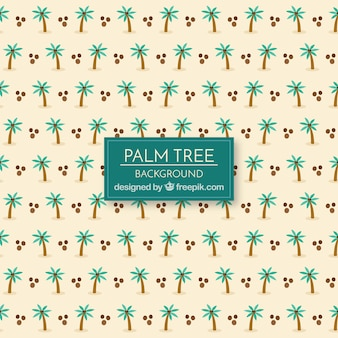 Palm and coconut background