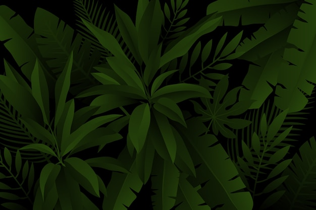 Palm and fern leaves realistic dark tropical background