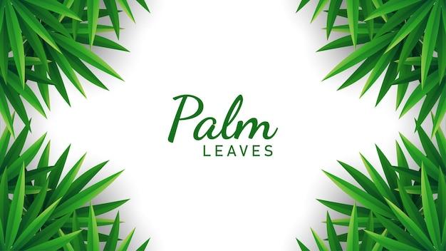 Пальмовые листья фон иллюстрации вектор