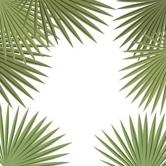 Рамка из пальмовых листьев на белом фоне. баннер тропических растений, шаблон карты.
