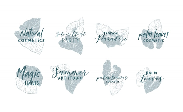 Palm leaves logo design collection