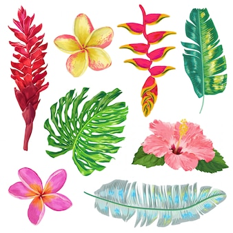 Palm leaves, monstera and exotic flowers set. tropical floral collection